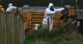 Bird Flu Strain At Suffolk Poultry Farm Confirmed As Infectious H5N1