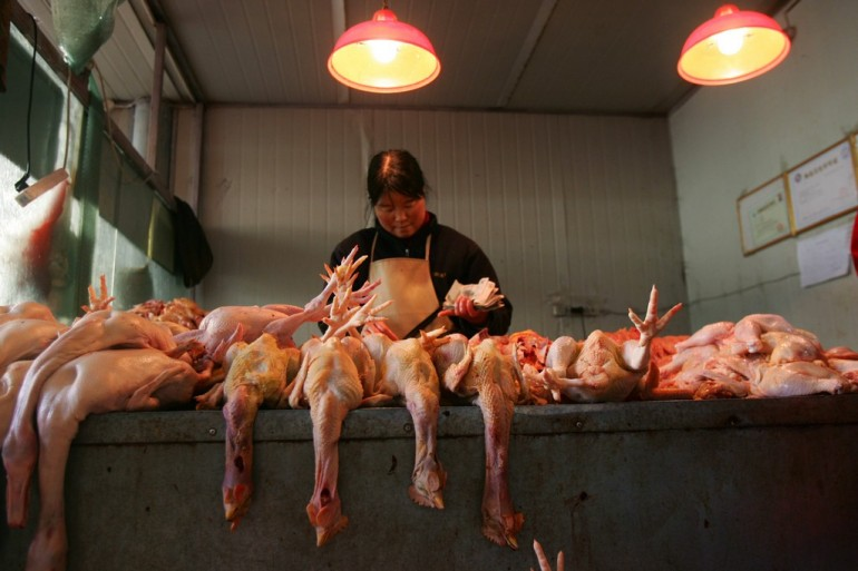 East China's Shandong Province Bans Poultry Breeding Following Death From Bird Flu