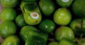 frutta6