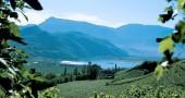 Appiano_sulla_strada_del_vino