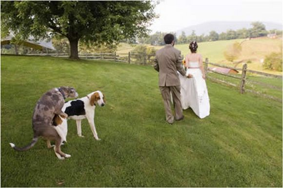 Awkward-wedding-photos-37
