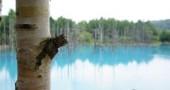 baby-blue-pond-japan-hokkaido-9