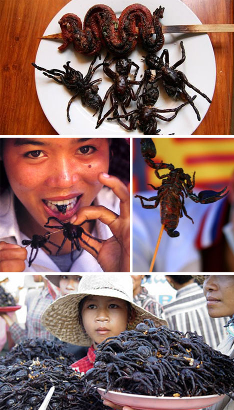 Bizarre foods insects