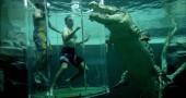 Cage-Of-Death-Crocodile-Dive-Experience-5