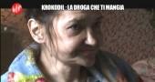 KROKODIL-LE IENE-DROGA DIVORA-1