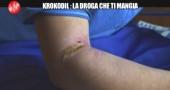 KROKODIL-LE IENE-DROGA DIVORA-24