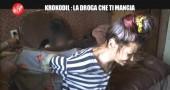 KROKODIL-LE IENE-DROGA DIVORA-3