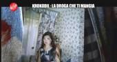 KROKODIL-LE IENE-DROGA DIVORA-4