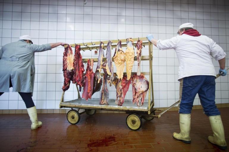 La carne scaduta di otto anni fa pronta a finire nelle macellerie
