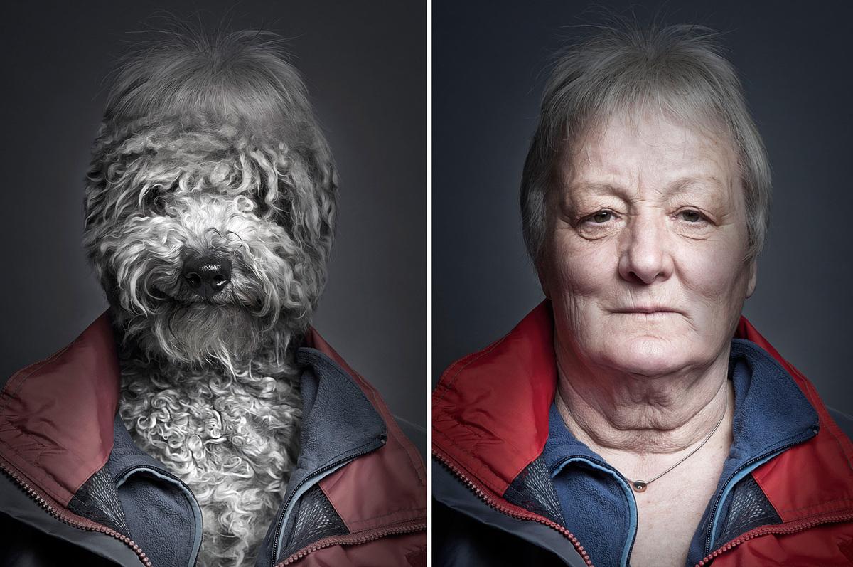 cani che assomigliano ai padroni 1