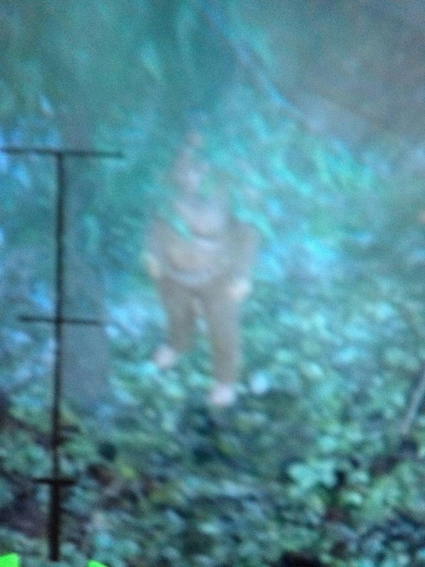 Il Bigfoot nascosto in Grand Theft Auto V