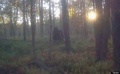 bigfoot pennsylvania 2