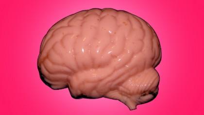 il cervello di kennedy
