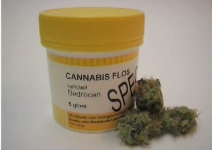 iene cannabis medica 2