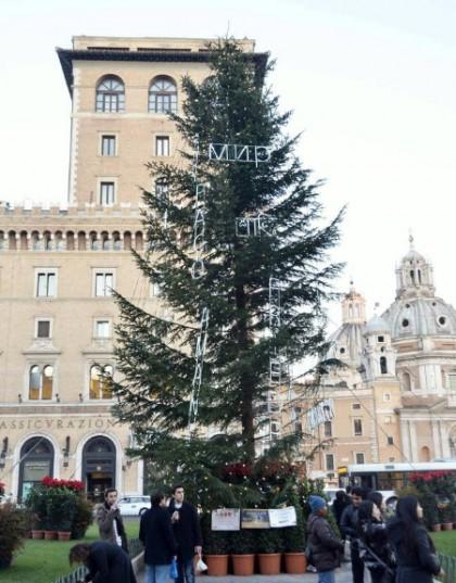 albero natale piazza venezia roma 2