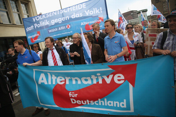 Alternative fuer Deutschland Campaigns in Hamburg
