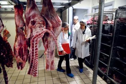 scandalo-carne-di-cavallo-francia