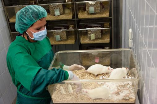 sperimentazione animale bufala animalisti volantini