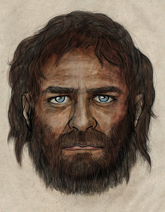 Artist's impression of a blue-eyed hunter-gatherer