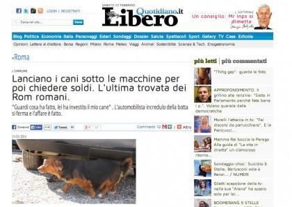bufala cani rom 1