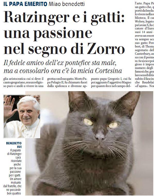 ratzinger e i gatti