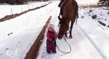 bimba passeggiata cavallo 2
