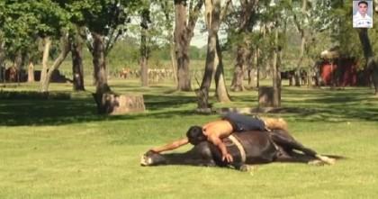 yoga cavallo 2