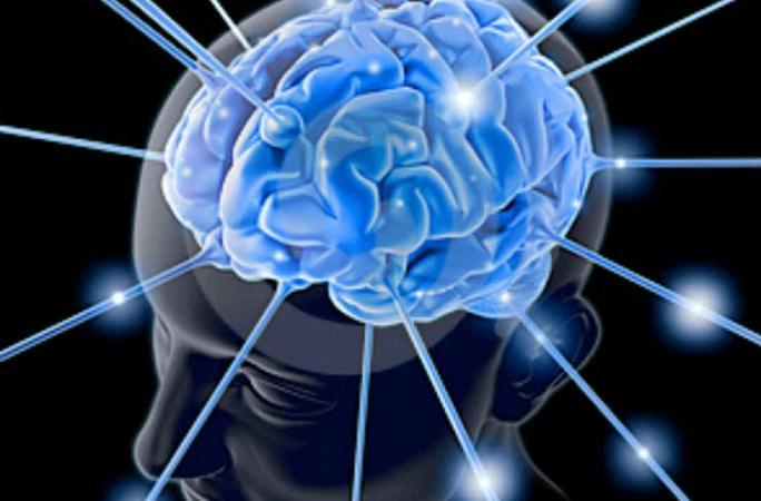 Il cervello tra le gambe scena