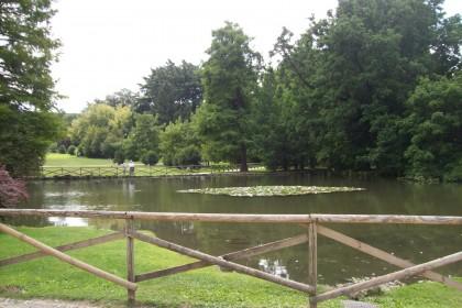 Vista_del_Parco_Sempione_(Milano)