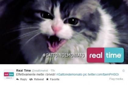gatto indemoniato real time 1
