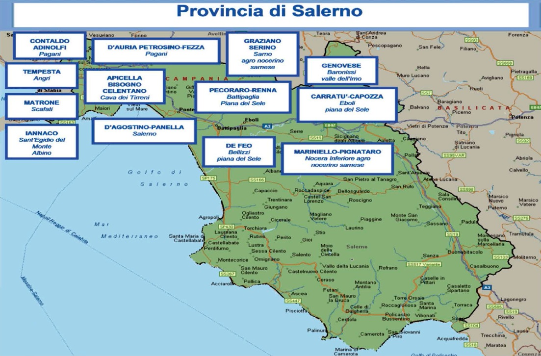 mappa camorra 06 salerno