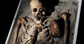I DENTI DURANO PIÚ DELLE OSSA- Spesso capita che gli archeologi ritrovino dentature di uomini i cui scheletri sono già scomparsi. Segno dell'estrema durata dei nostri dentiNIKOLAY DOYCHINOV/AFP/GettyImages