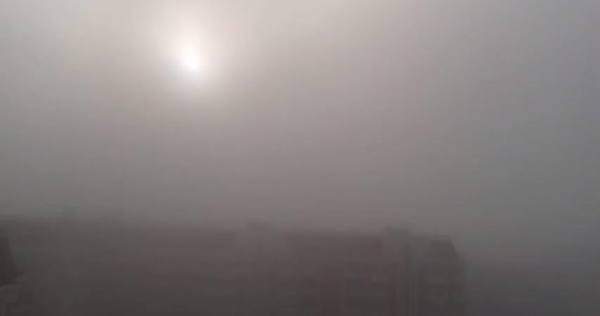 Mosca minacciata da una nube di acido solfidrico