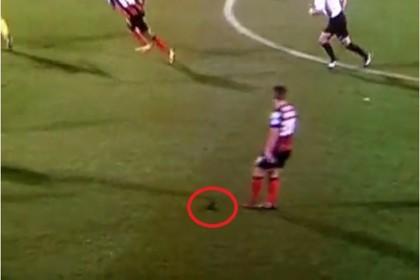 Baily Cargill, il calciatore che perde il parrucchino in campo