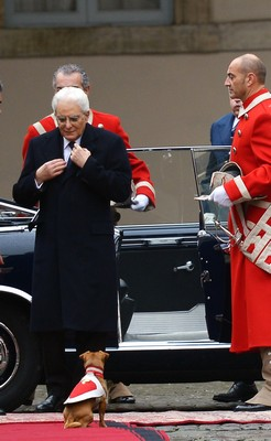 Briciola, la mascotte dei Carabinieri che dà il benvenuto al Presidente Mattarella