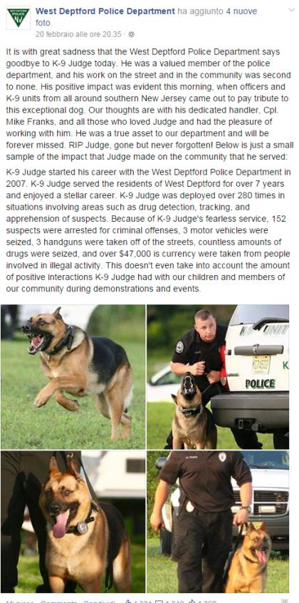 cane poliziotto (5)