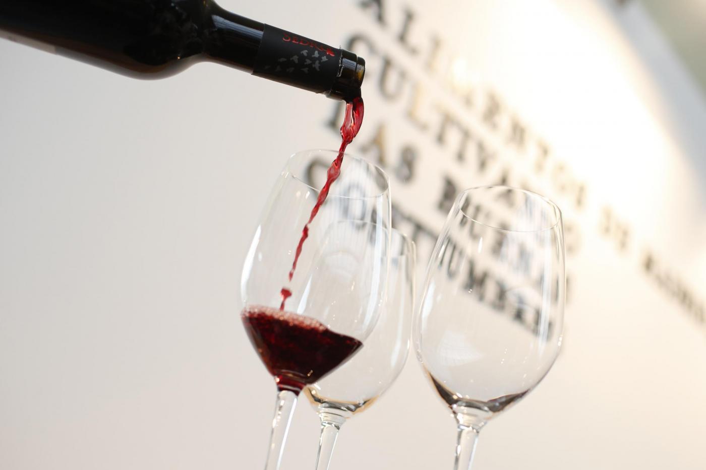 I 12 segreti del vino che non conoscevi