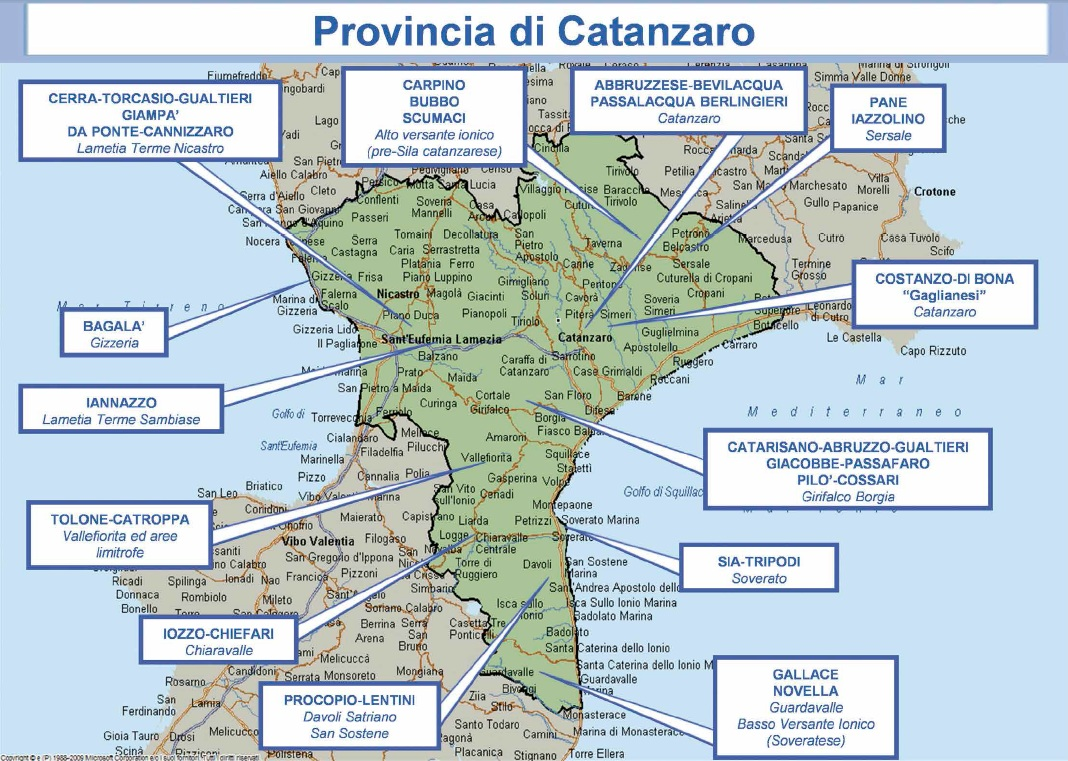 mappa ndrangheta 05 catanzaro