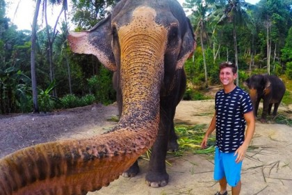 elefante selfie