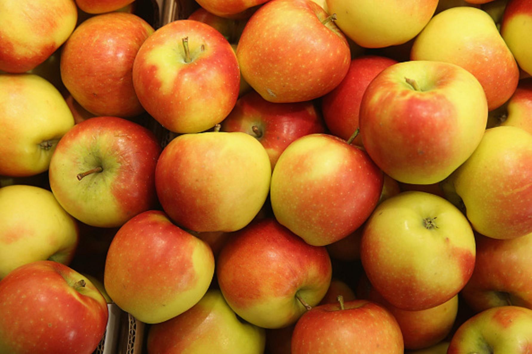 Qual la frutta per dimagrire - Frutta che fa andare in bagno ...