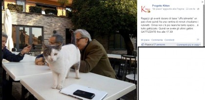 vittorio sgarbi gattini progetto