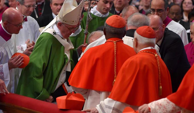 papa francesco cardinale cade foto