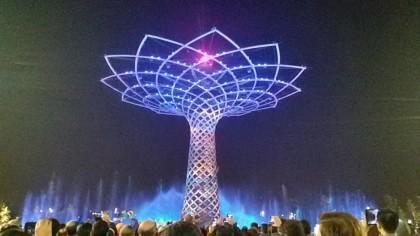 albero della vita foto