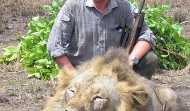 Luciano Ponzetto veterinario leone