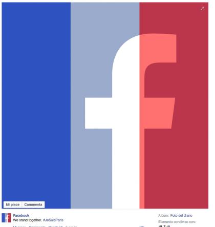 foto-profilo-facebook-francia-isis