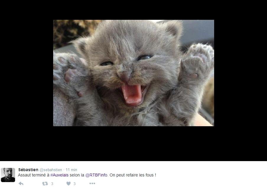 Anche in questo caso gli utenti del Belgio hanno alzato lo sbarramento di gattini a protezione delle indiscrezioni potenzialmente utili ai braccati