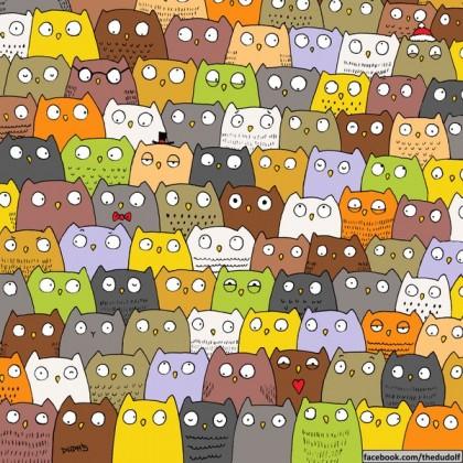 trova il gatto
