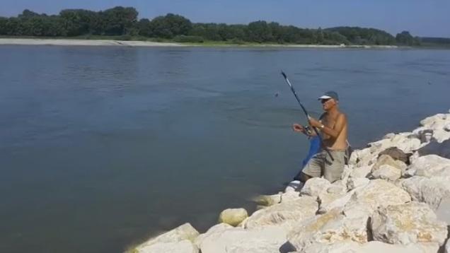 animalisti pescatore