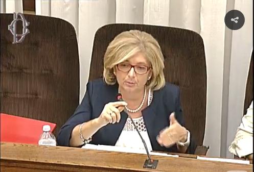 Raggi muraro audizione commissione rifiuti diretta streaming for Camera diretta tv