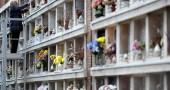Scambio di salme a Milano, per 16 anni porta i fiori sulla tomba sbagliata